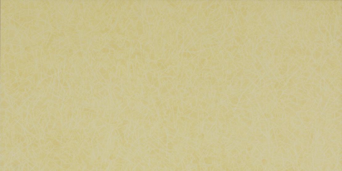 HC22017 Light Maize