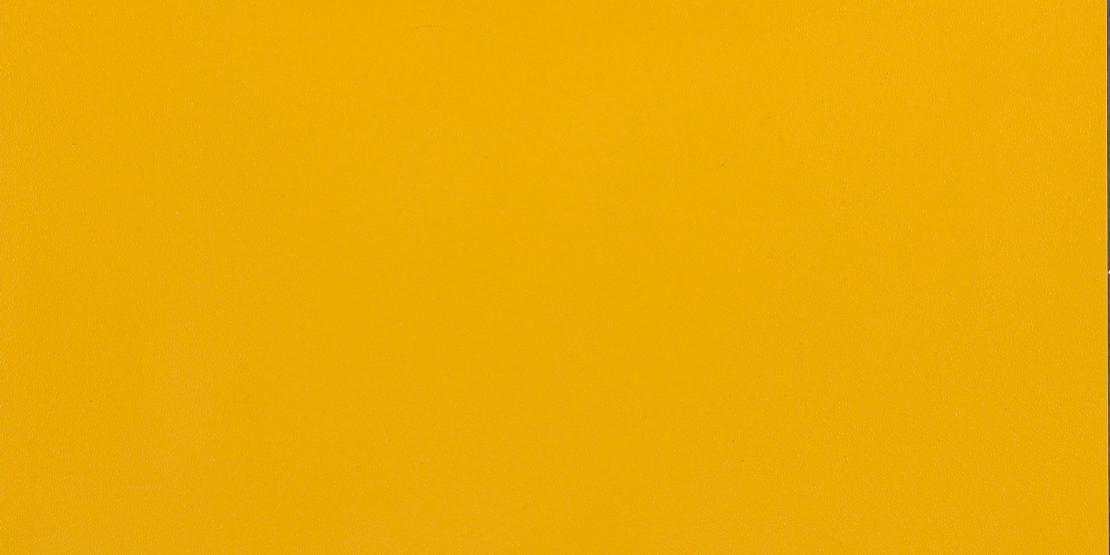 IS02,-School-Bus-Yellow